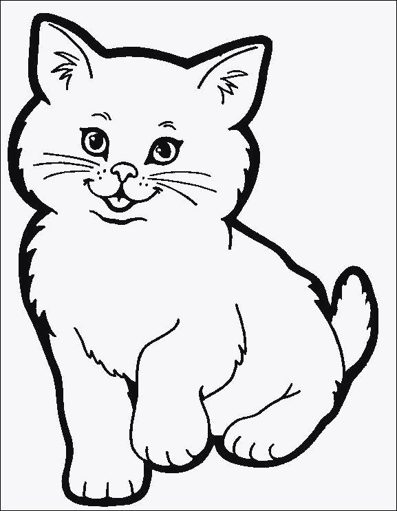 Ausmalbilder Katzen Und Hunde Genial Ausmalbilder Kostenlos Katzen Bild