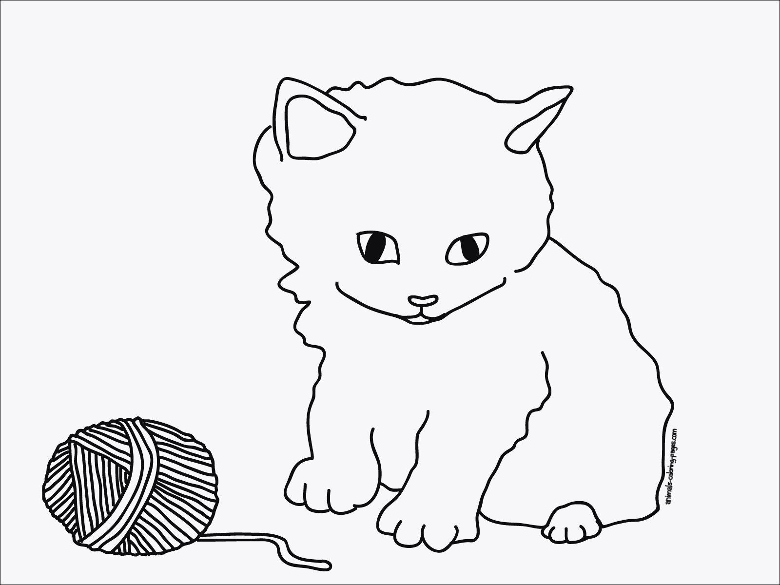 Ausmalbilder Katzen Und Hunde Genial Ausmalbilder Kostenlos Katzen Bilder