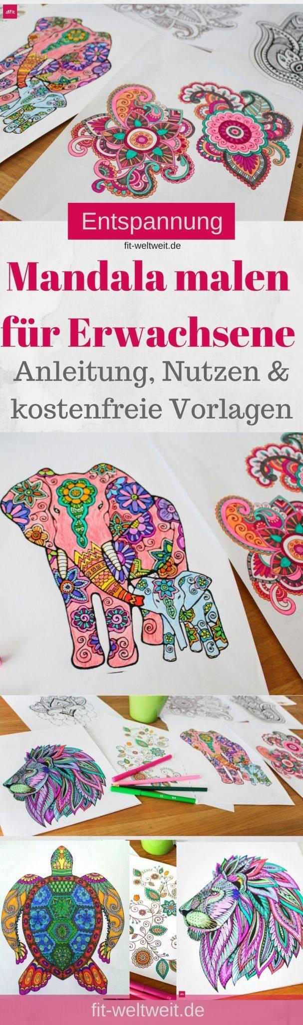 Ausmalbilder Malen Nach Zahlen Das Beste Von Malen Nach Zahlen Vorlage Erstellen Bayern Ausmalbilder Frisch Igel Bilder