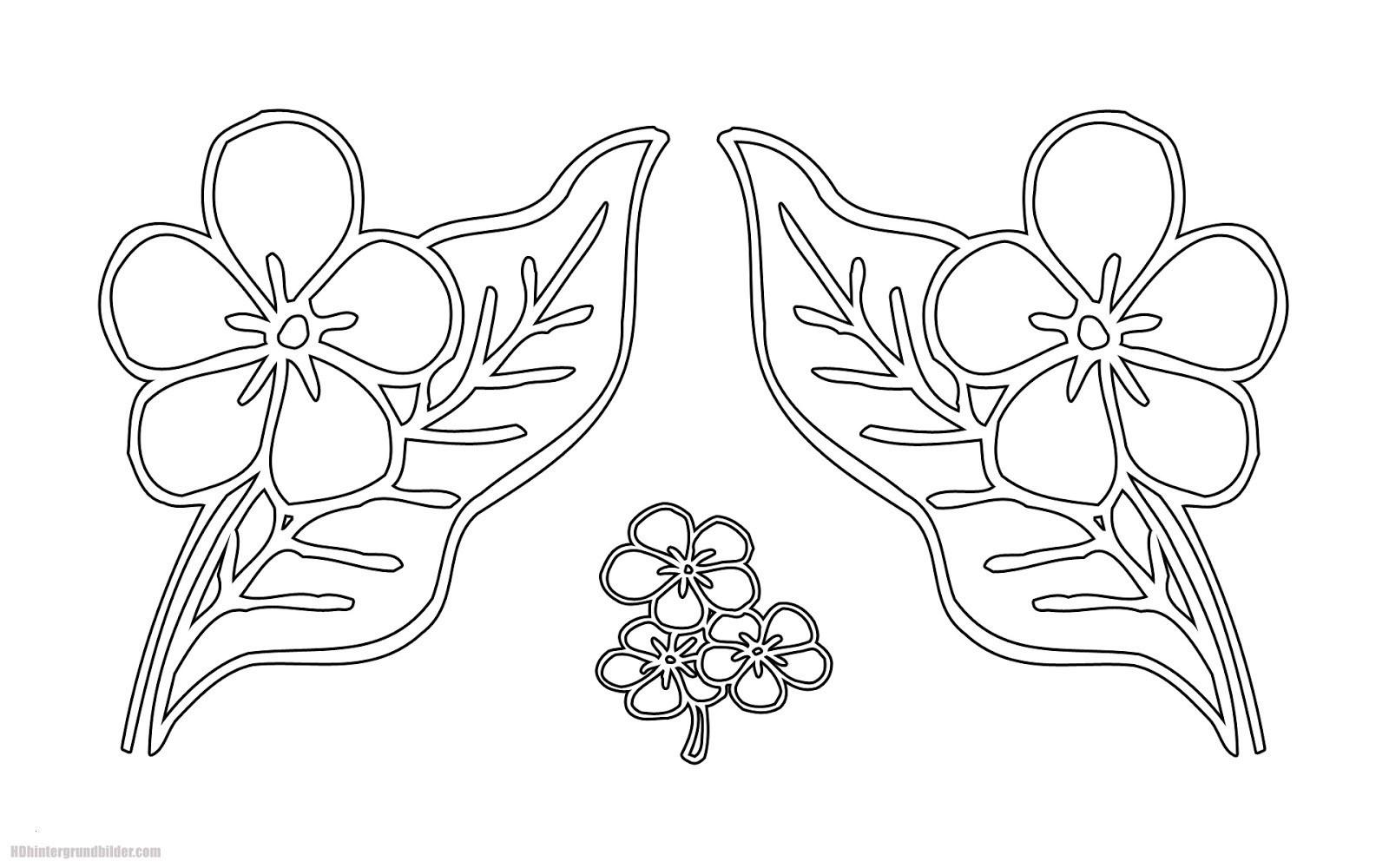 die besten ideen für ausmalbilder mandala rosen  beste