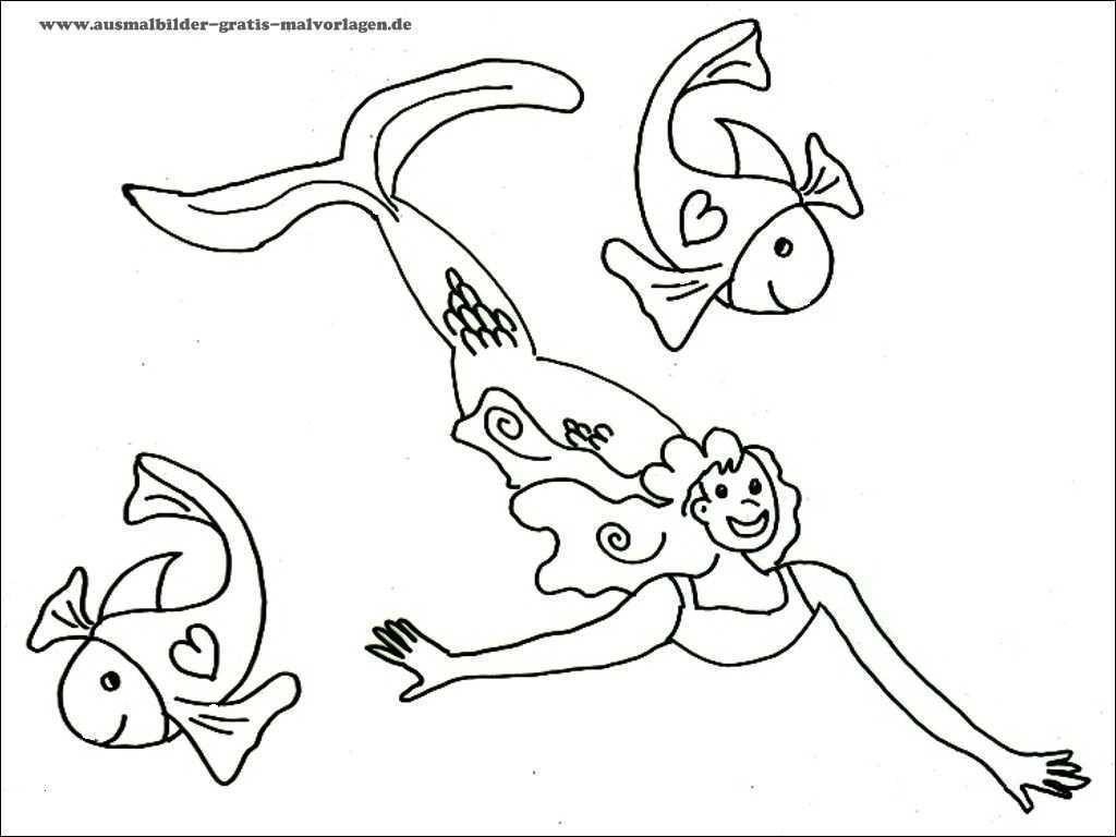 Ausmalbilder Meerjungfrau Mit Delfin Das Beste Von Ausmalbilder Delfine Zum Ausdrucken Ideen Ausmalbilder Delfine Sammlung