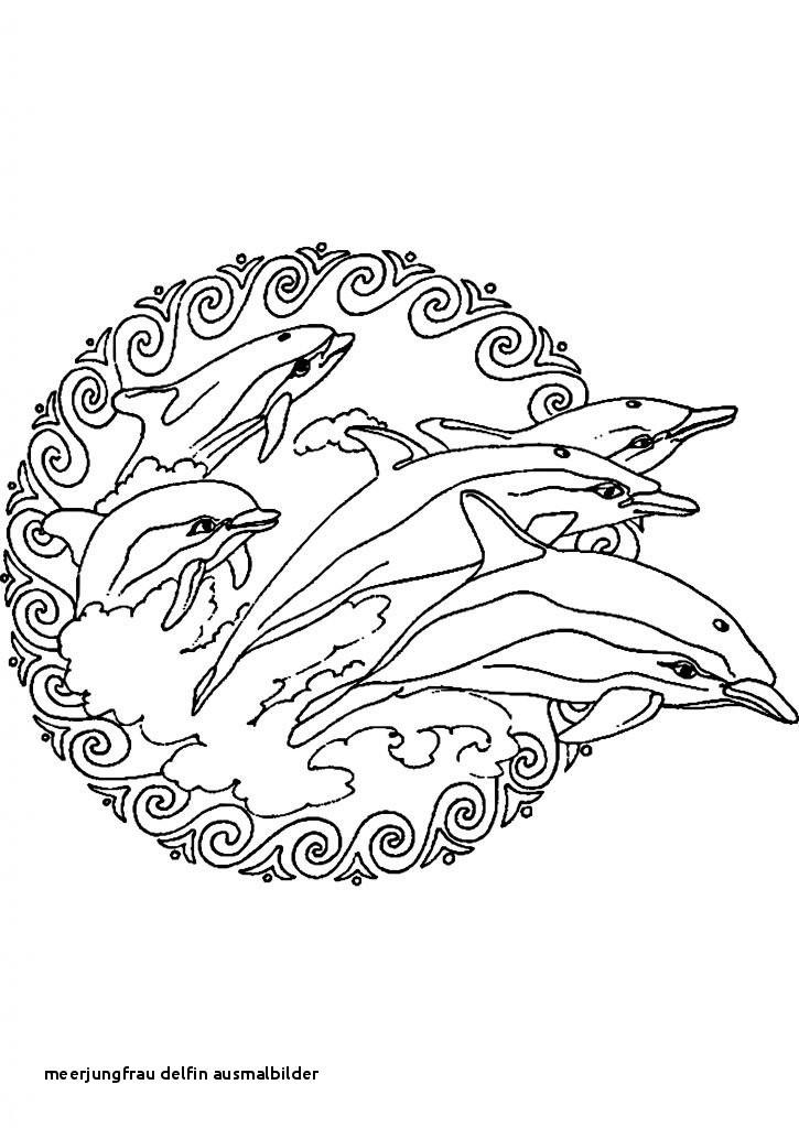 Ausmalbilder Meerjungfrau Mit Delfin Einzigartig Meerjungfrau Delfin Ausmalbilder 29 Meerjungfrau Ausmalbild Colorprint Galerie