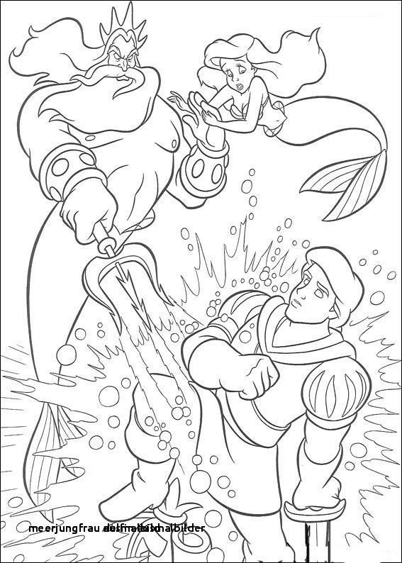 Ausmalbilder Meerjungfrau Mit Delfin Frisch Meerjungfrau Delfin Ausmalbilder 29 Meerjungfrau Ausmalbild Colorprint Stock