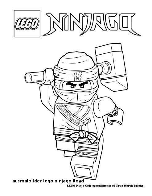 Ausmalbilder Ninjago Kai Inspirierend 20 Ausmalbilder Lego Ninjago Lloyd Colorprint Fotos