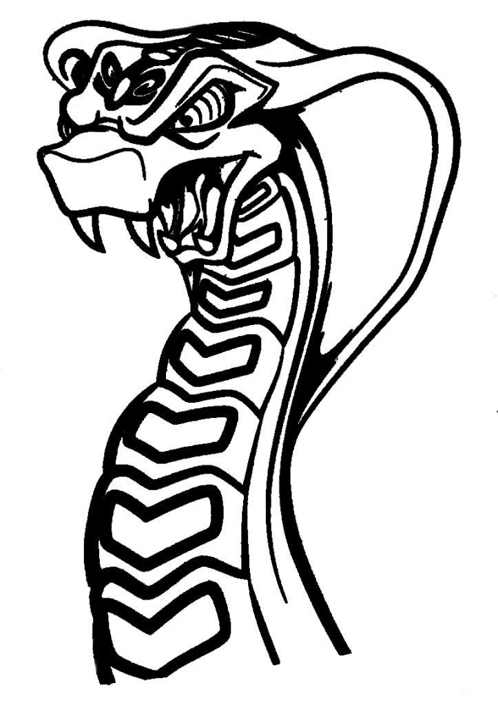 Ausmalbilder Ninjago Schlangen Frisch Druckbare Malvorlage Malvorlagen Ninjago Beste Druckbare Galerie