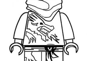 Ausmalbilder Ninjago Schlangen Inspirierend Ausmalbild Lego Ninjago Schlangen Figuren Zum Ausmalen Frisch Das Bild