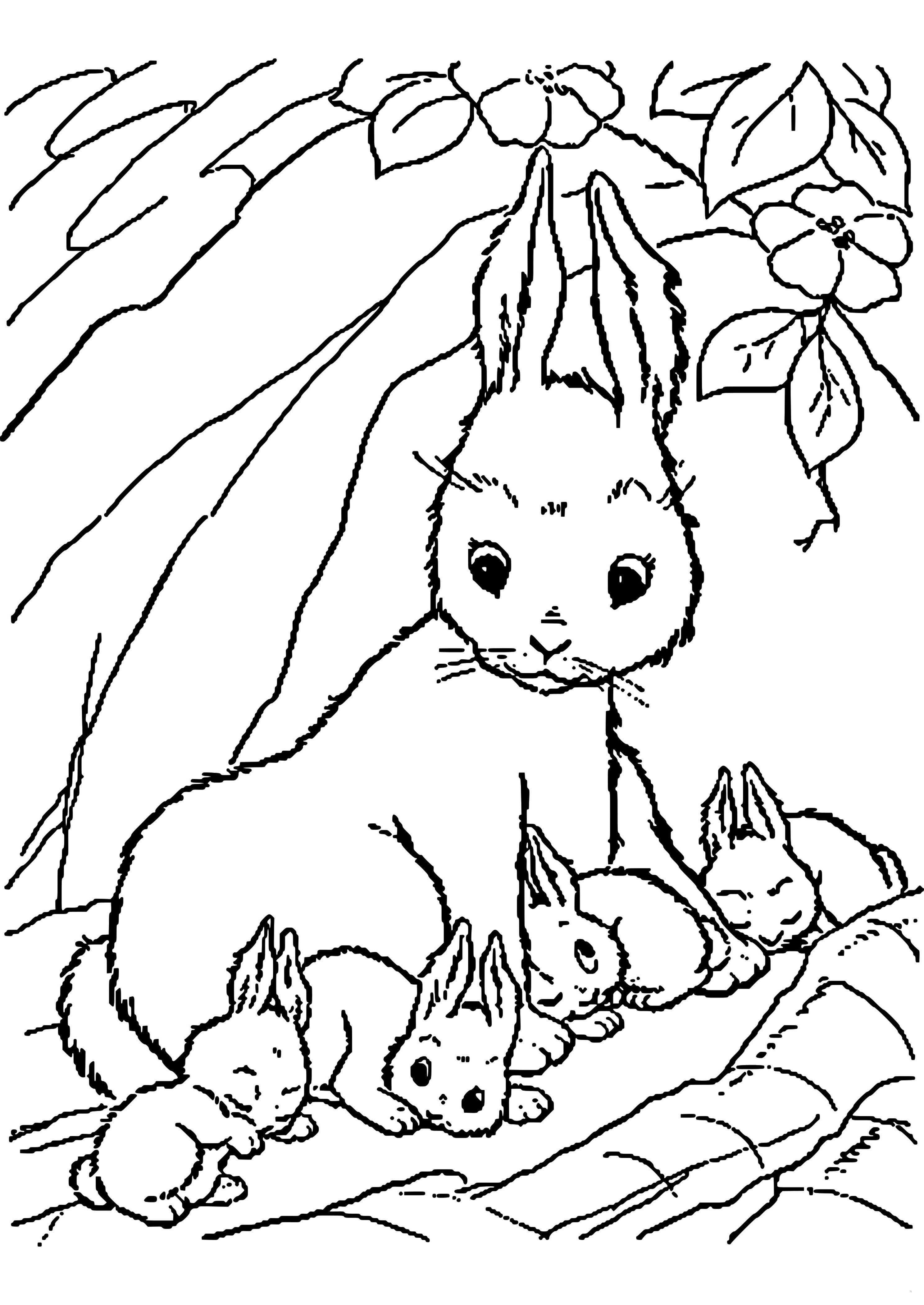 Ausmalbilder Ostern Hase Einzigartig 34 Frisch Malvorlage Hase – Malvorlagen Ideen Fotos