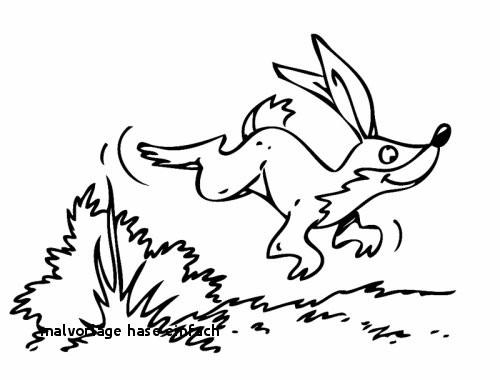Ausmalbilder Ostern Hase Genial 24 Malvorlage Hase Einfach Colorprint Galerie