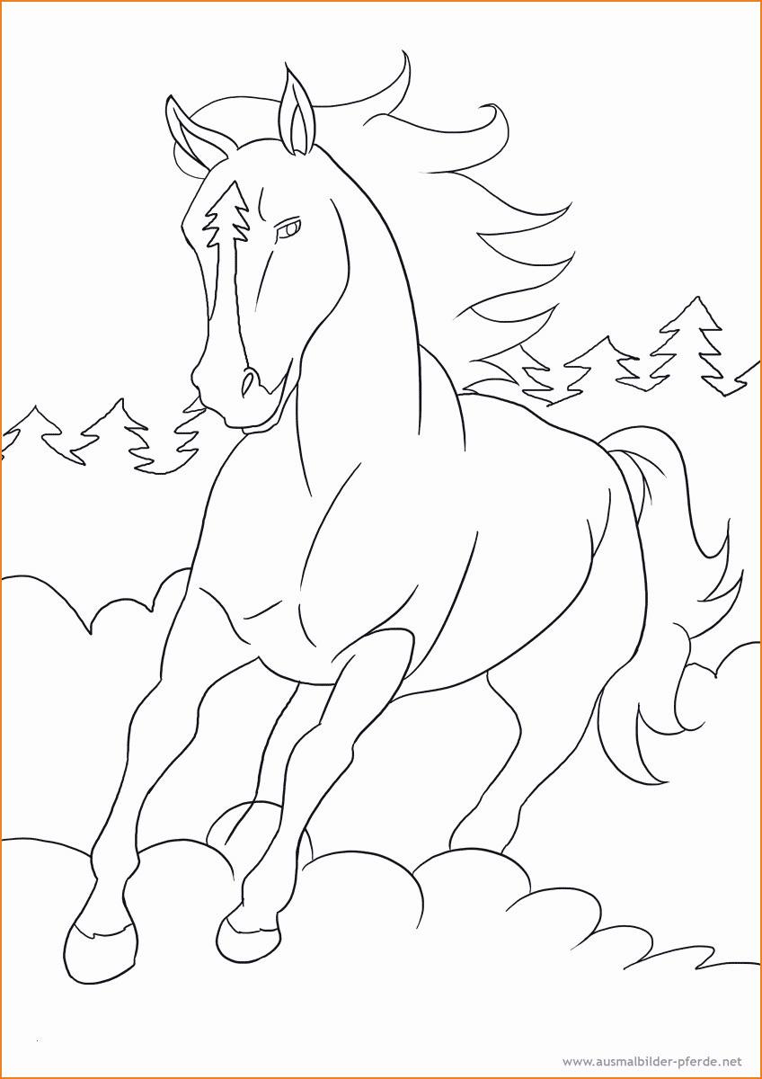 Ausmalbilder Pferde Mit Fohlen Das Beste Von 35 Pferde Mit Fohlen Ausmalbilder Zum Ausdrucken Kostenlos Bilder