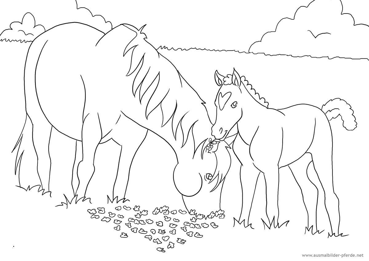 Ausmalbilder Pferde Mit Fohlen Einzigartig 40 Skizze Malvorlagen Pferde Mit Fohlen Treehouse Nyc Sammlung