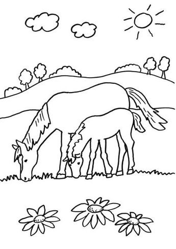 Ausmalbilder Pferde Mit Fohlen Frisch Ausmalbilder Pferde Mit Fohlen Galerie