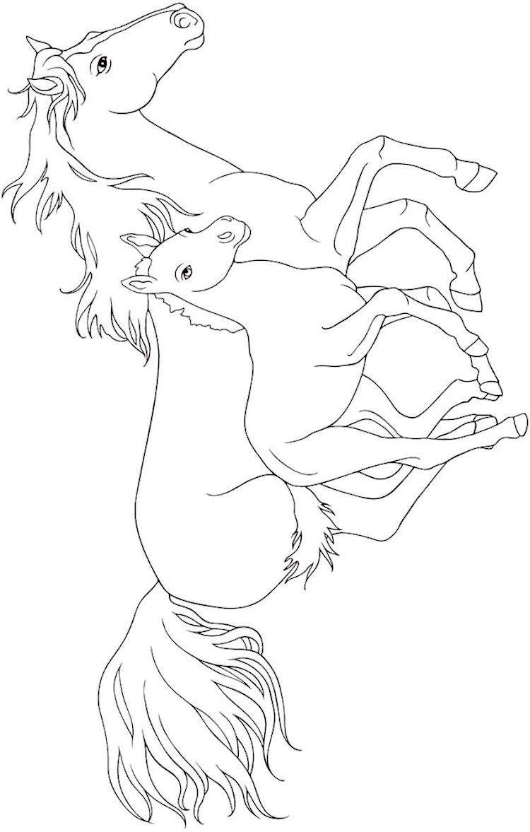 Ausmalbilder Pferde Mit Fohlen Frisch Malvorlagen Ostwind Genial [ostwind 2 Malvorlagen] 100 Besten Frisch Fotografieren