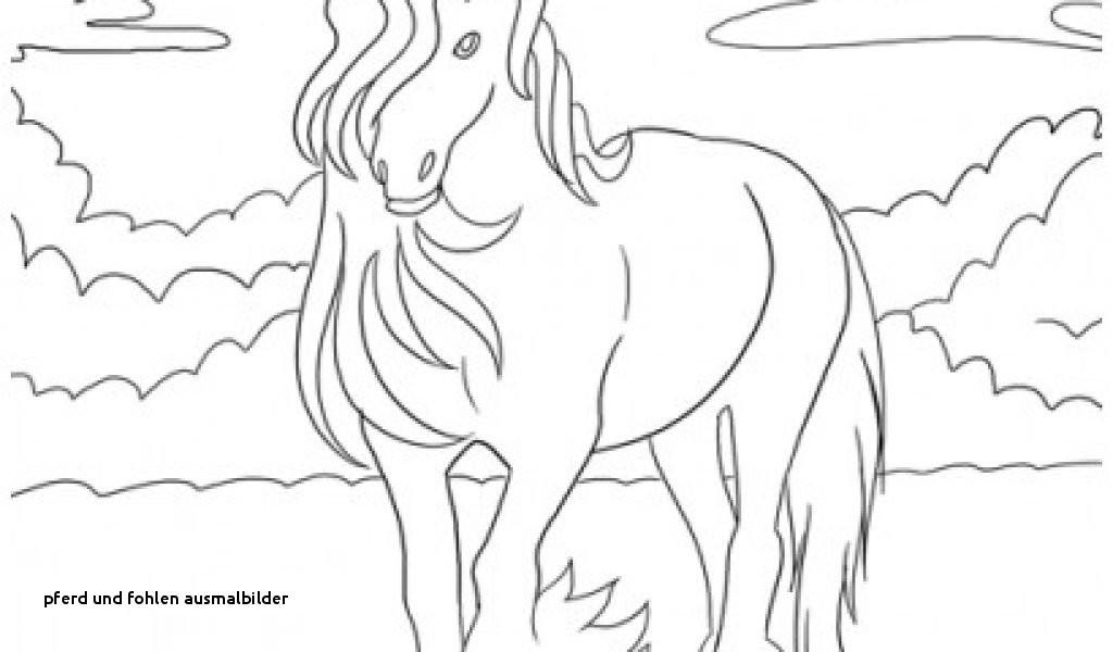 Ausmalbilder Pferde Mit Fohlen Frisch Pferd Und Fohlen Ausmalbilder König Der Löwen Malvorlagen Zum Galerie