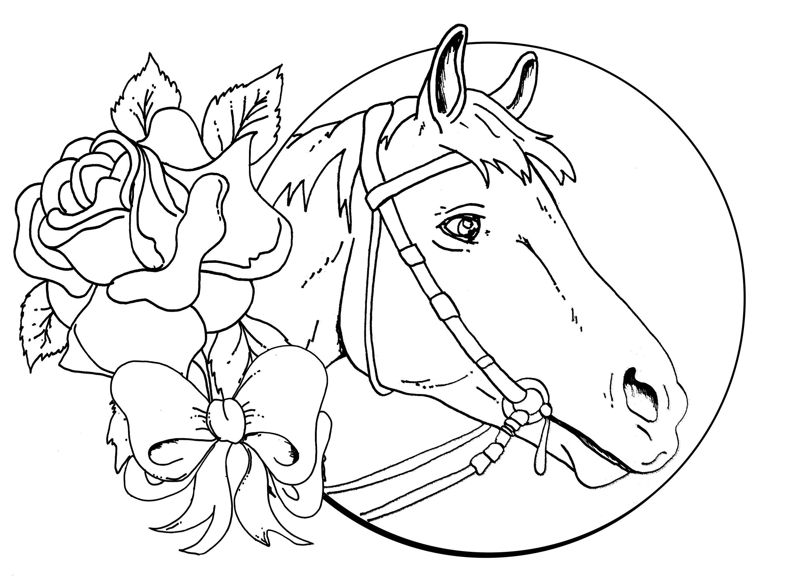Ausmalbilder Pferde Mit Fohlen Genial Pferde Bilder Zum Ausmalen Frisch 37 Ausmalbilder Pferd Mit Fohlen Stock