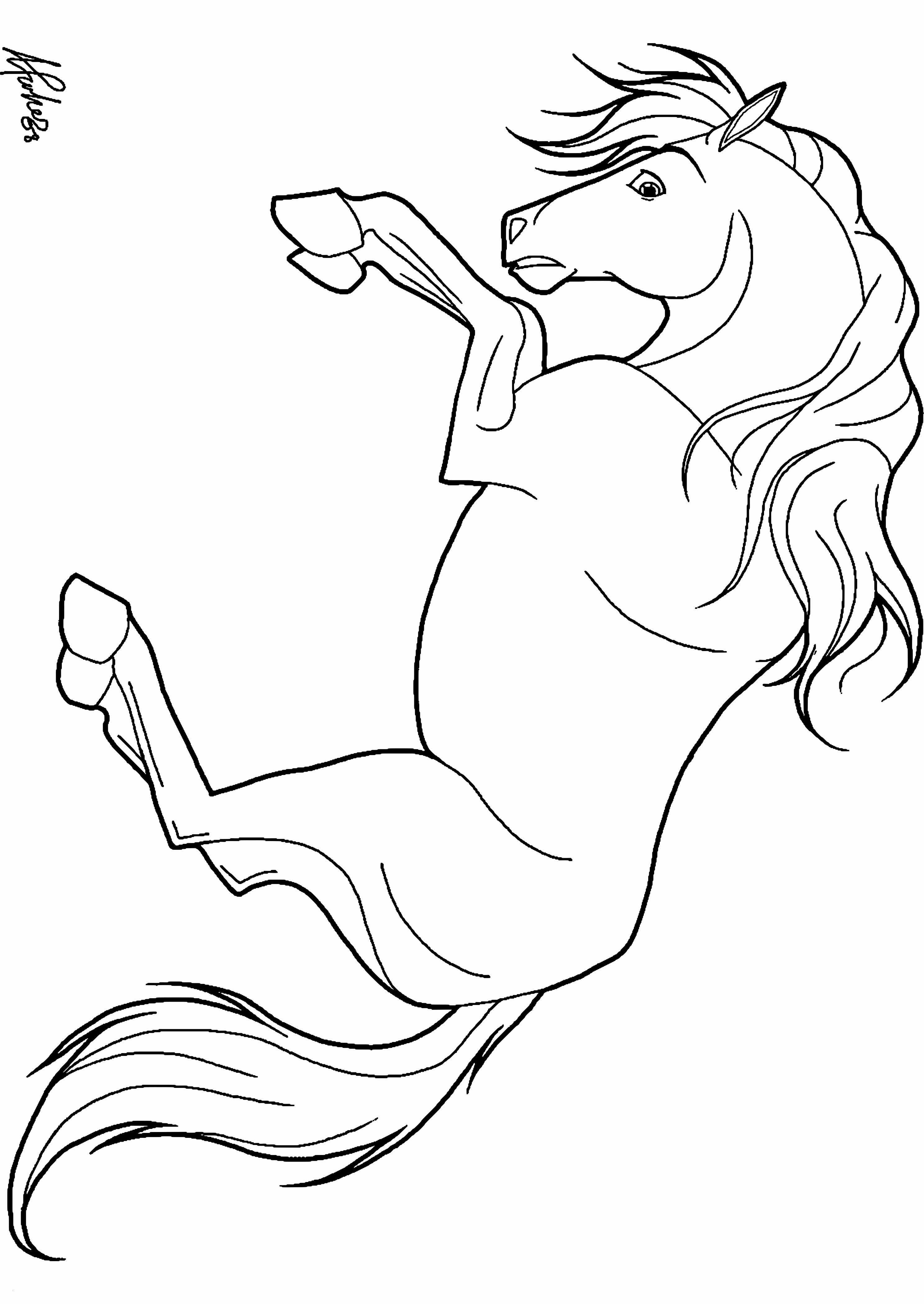 Ausmalbilder Pferde Mit Fohlen Inspirierend Malvorlagen Igel Best Igel Grundschule 0d Archives Uploadertalk Das Bild