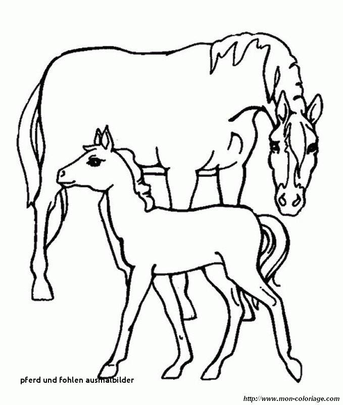 Ausmalbilder Pferde Mit Fohlen Neu Pferd Und Fohlen Ausmalbilder 37 Ausmalbilder Erwachsene Pferde Stock