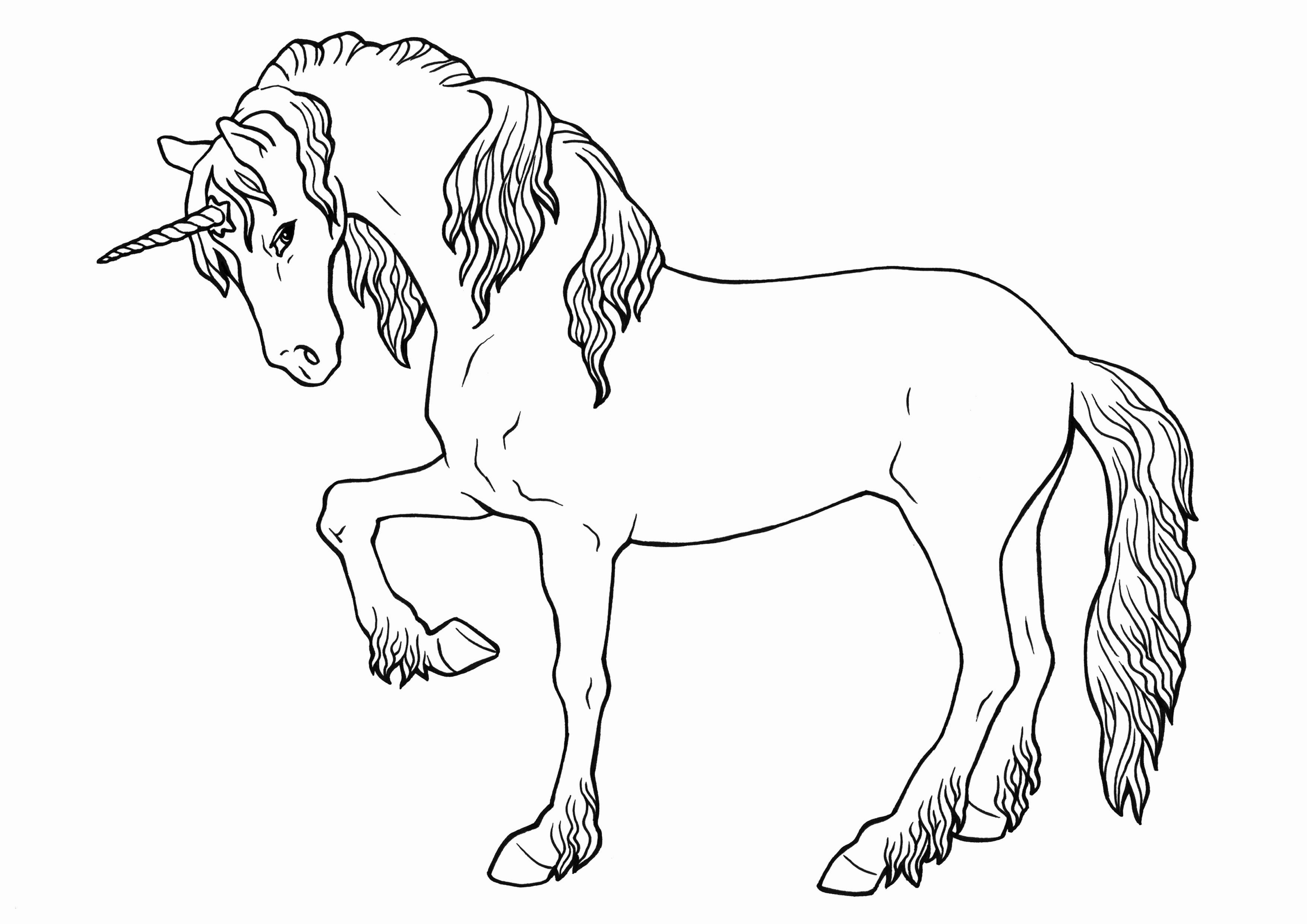 Ausmalbilder Pferde Mit Reiterin Das Beste Von Pferde Zum Ausdrucken Elegant Ausmalbilder Pferde Mit Reiterin Bild