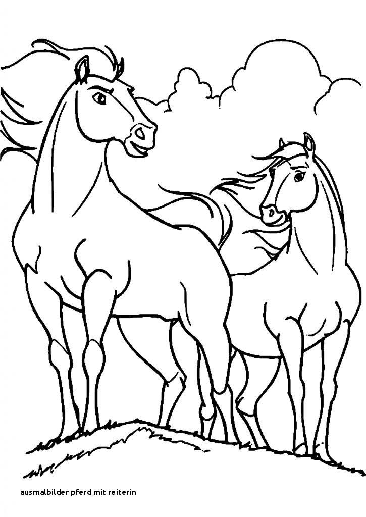 Ausmalbilder Pferde Mit Reiterin Neu Lernspiele Färbung Bilder