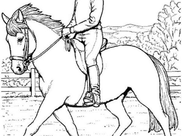 Ausmalbilder Pferde Mit Reiterin Einzigartig Ausmalbilder Pferde Mit Reiterin Ideen Ausmalbilder Pferde Galerie