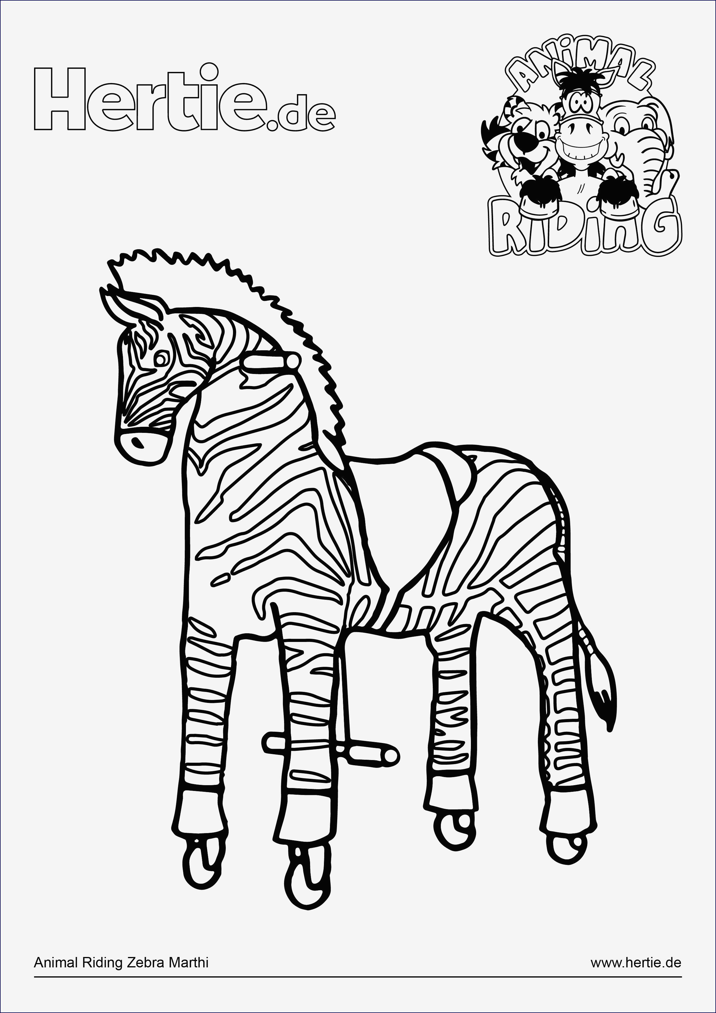 ausmalbilder pferde mit reiterin neu trainingsplan pferd