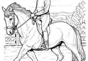 Ausmalbilder Pferde Mit Reiterin Genial Reiten 2 Ausmalbilder Pferde Färbung Ausmalbilder Pferde Mit Reiter Fotos
