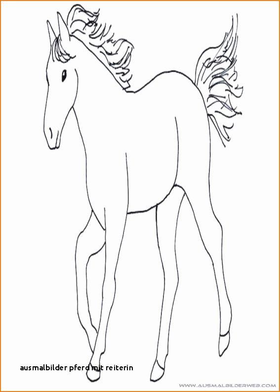 Ausmalbilder Pferde Mit Reiterin Inspirierend Ausmalbilder Pferd Mit Reiterin Malvorlagen Pferde A4 Colorprint Sammlung