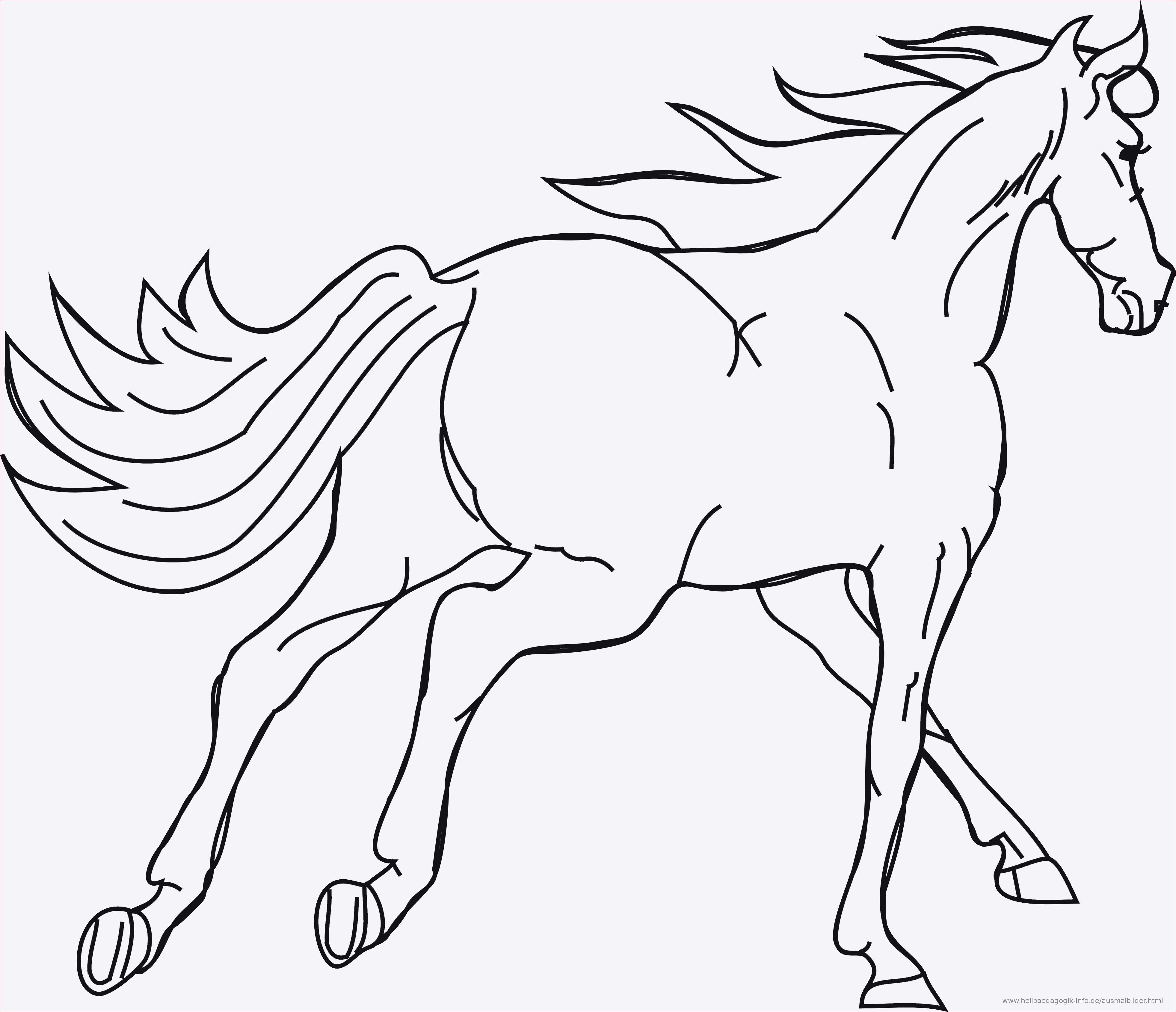 Ausmalbilder Pferde Mit Reiterin Inspirierend Malvorlagen Pferde A4 Fotos