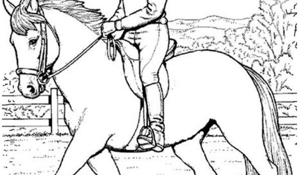 ausmalbilder pferde turnier  tippsvorlage