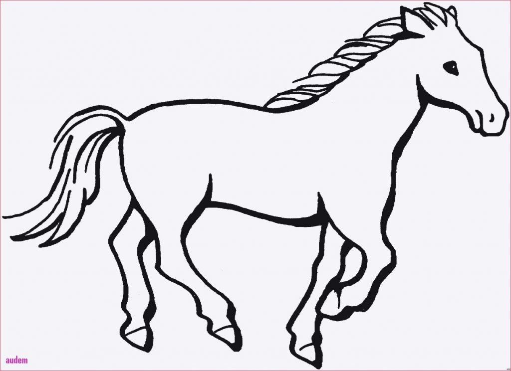 Ausmalbilder Pferde Mit Reiterin Neu Druckbare Malvorlage Ausmalbilder Kostenlos Pferde Beste Sammlung