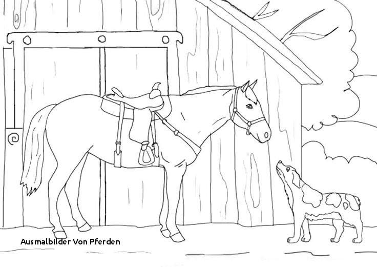 Ausmalbilder Pferde Turnier Das Beste Von Ausmalbilder Von Pferden Bayern Ausmalbilder Frisch Igel Grundschule Bilder