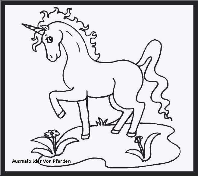 Ausmalbilder Pferde Turnier Das Beste Von Ausmalbilder Von Pferden Bayern Ausmalbilder Frisch Igel Grundschule Das Bild
