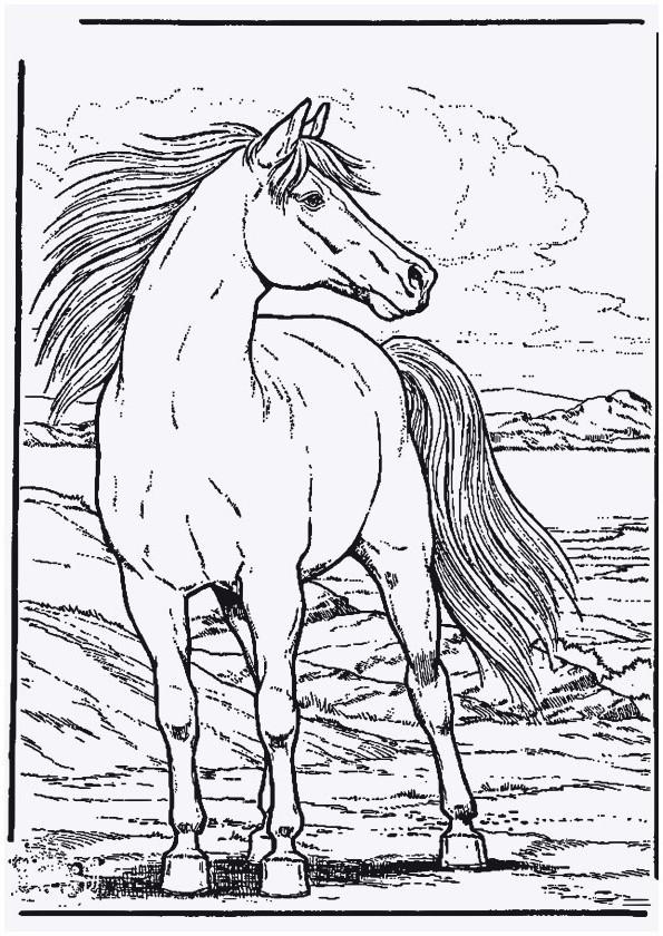Ausmalbilder Pferde Turnier Einzigartig 30 Frisch Kostenlose Ausmalbilder Pferde – Malvorlagen Ideen Galerie