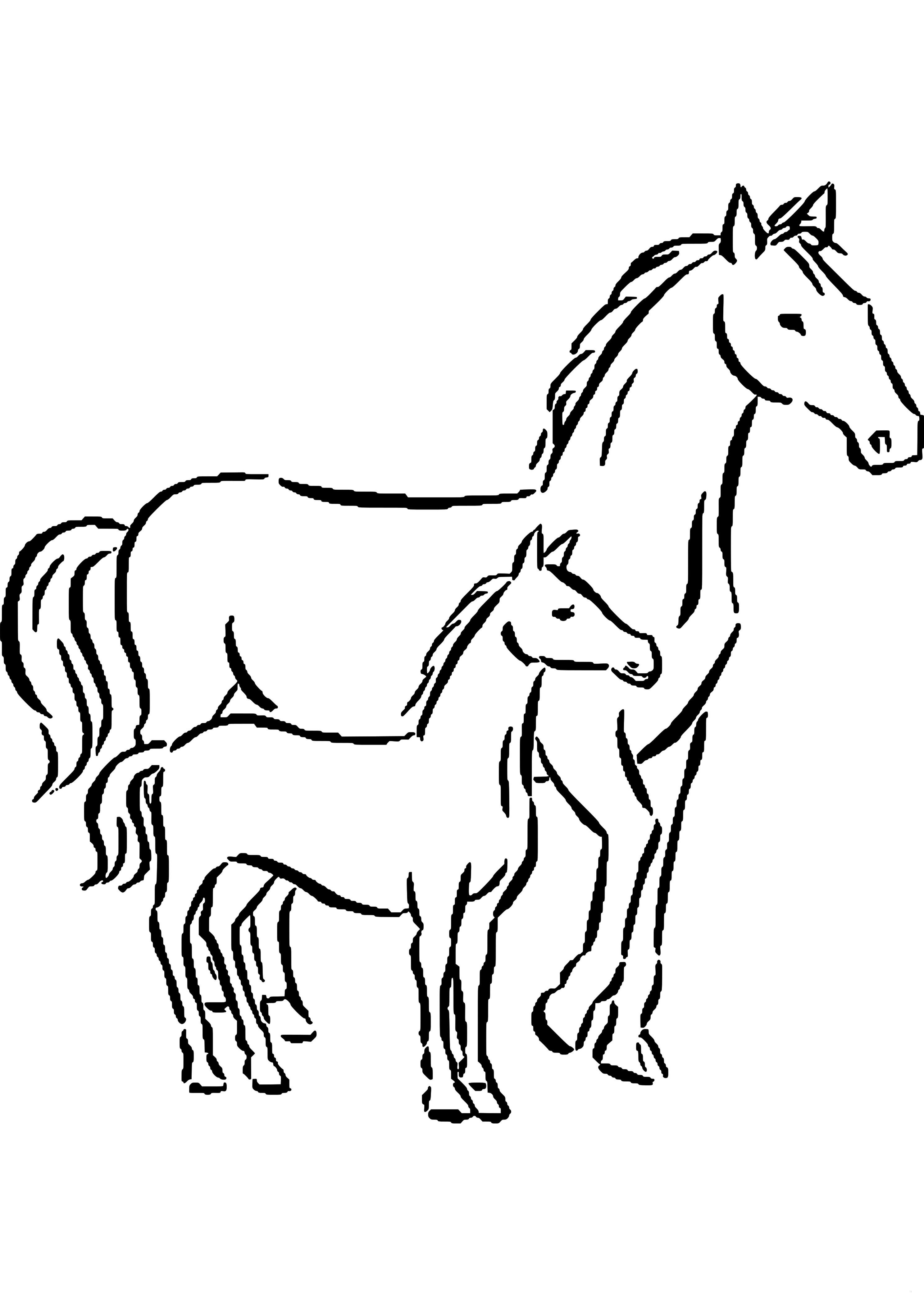 ausmalbilder pferde turnier  pferde bilder zum ausmalen