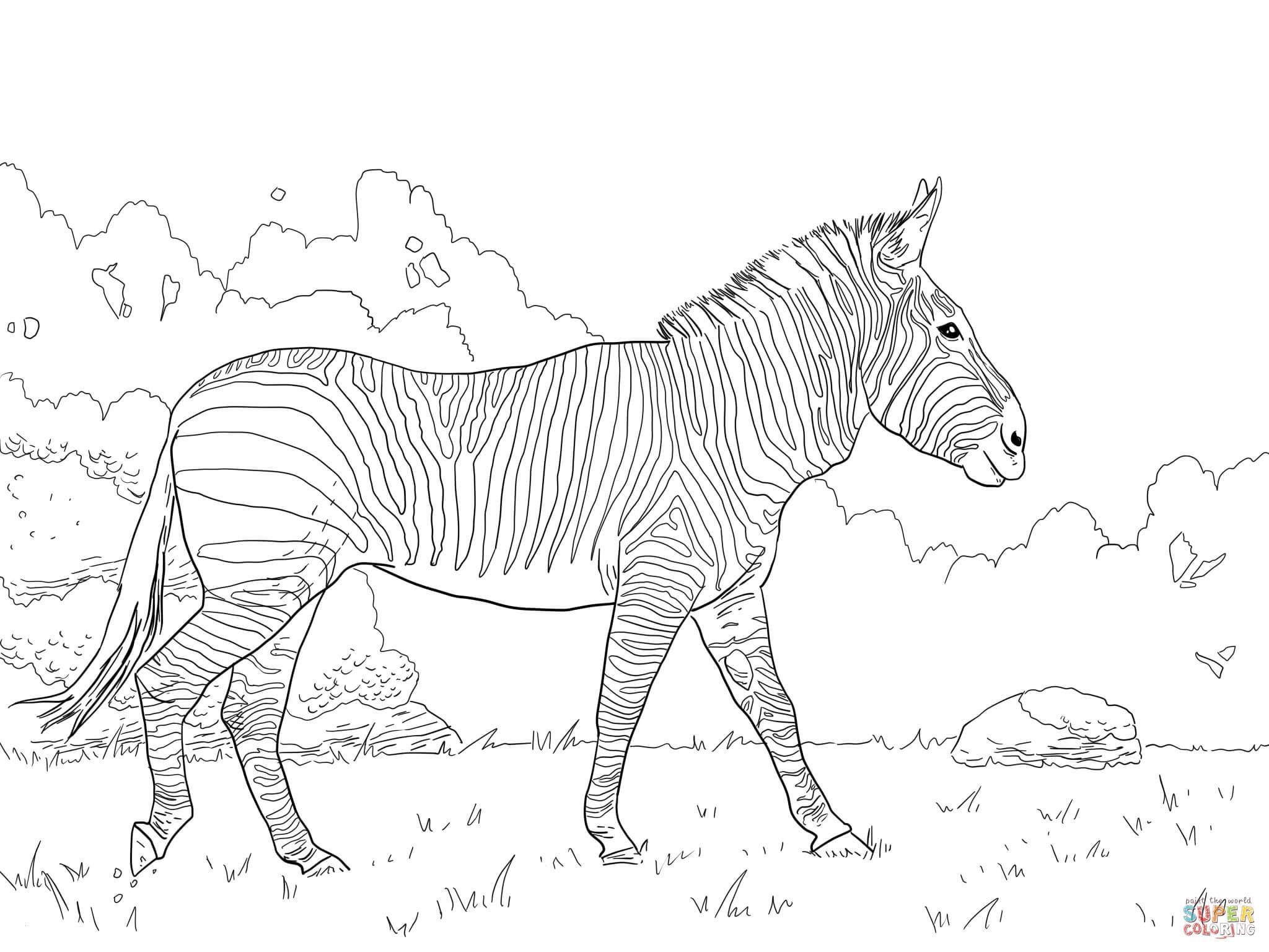 Ausmalbilder Pferde Turnier Frisch Ausmalbilder Pferde Kostenlos Zum Ausdrucken Inspirierend Stock
