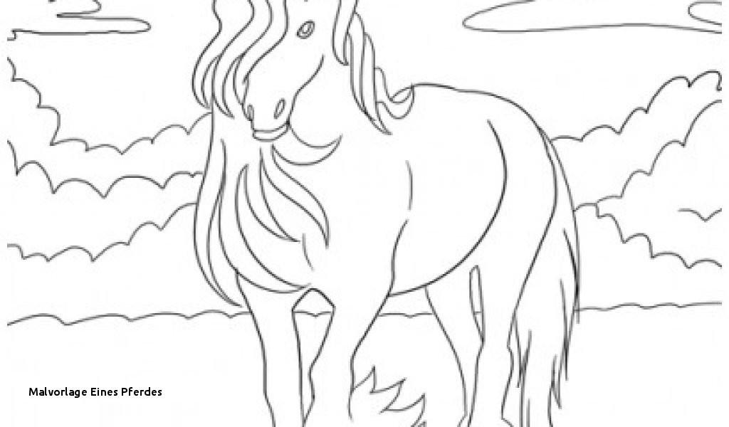 Malvorlage Eines Pferdes Ausmalbilder Pferde Mit Madchen perfect color