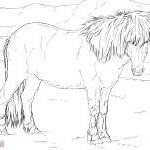 Ausmalbilder Pferde Turnier Genial 26 Inspirierend Malvorlagen Pferde – Malvorlagen Ideen Bild