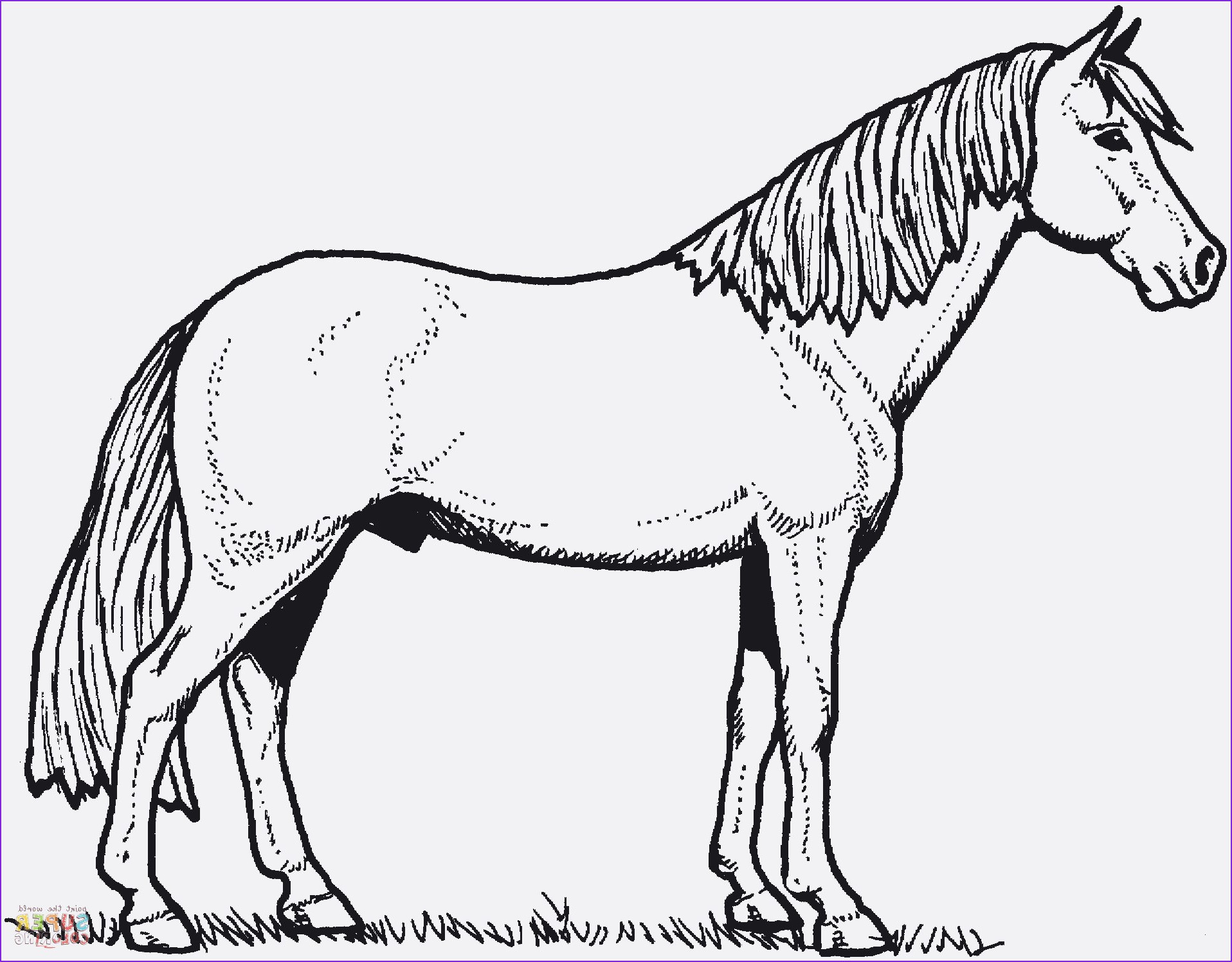 Ausmalbilder Pferde Turnier Genial 26 Inspirierend Malvorlagen Pferde – Malvorlagen Ideen Fotografieren