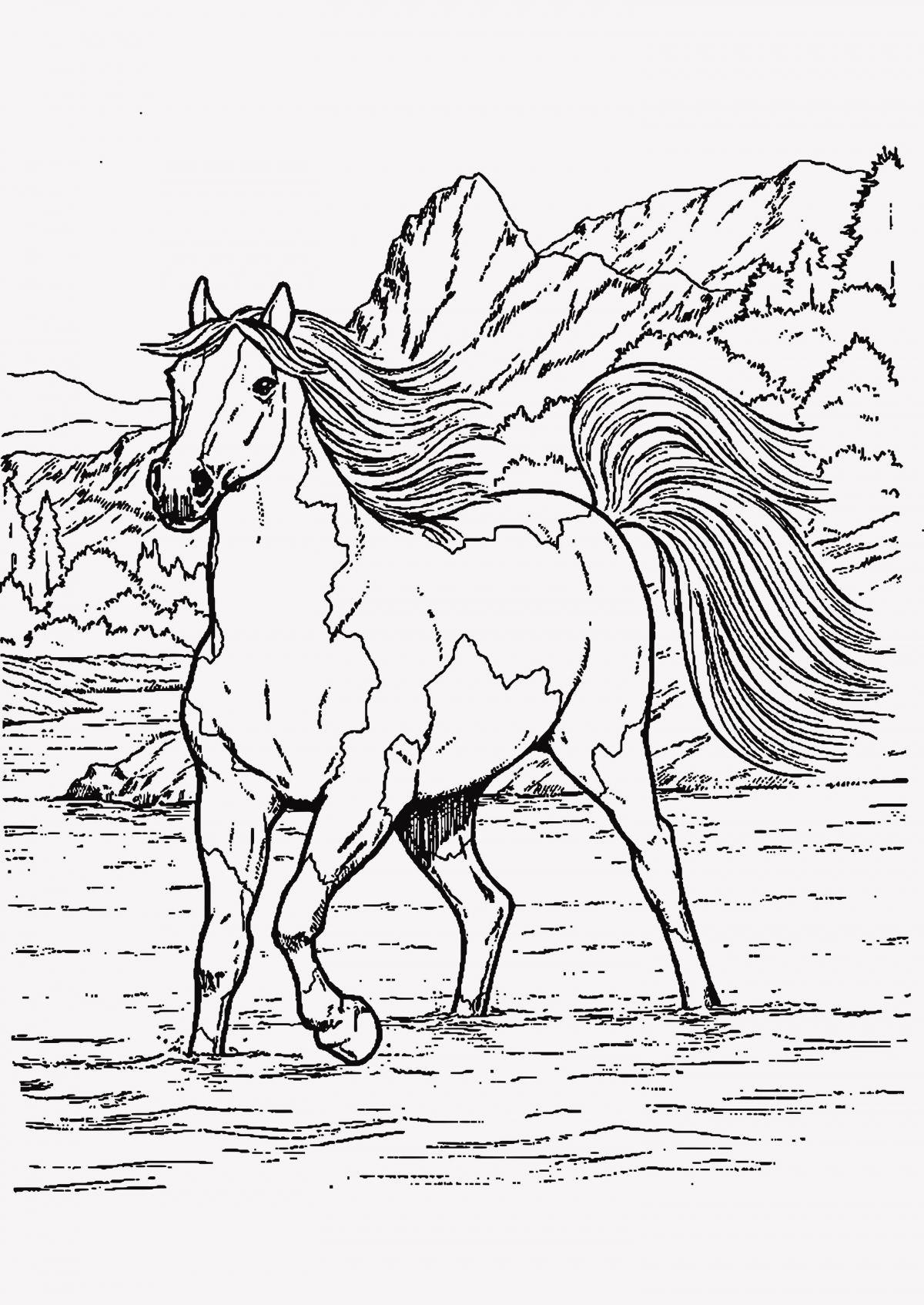 Ausmalbilder Pferde Turnier Inspirierend Kostenlose Malvorlagen Pferde Awesome 25 Genial Pferde Ausmalbild Stock