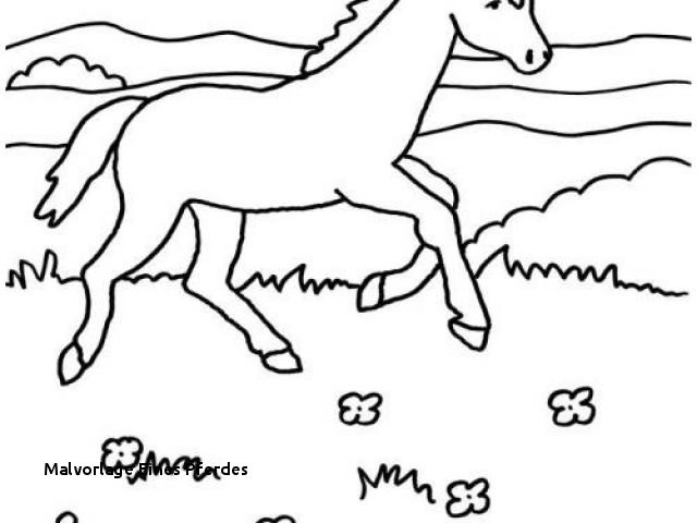Ausmalbilder Pferde Turnier Inspirierend Malvorlage Eines Pferdes Ausmalbilder Pferde Mit Madchen Perfect Color Stock
