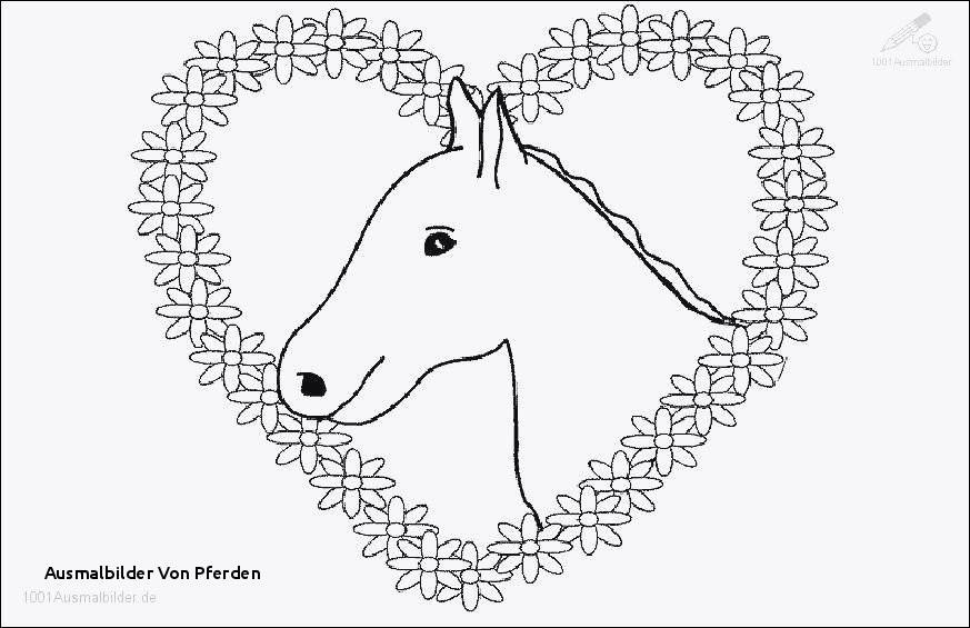Ausmalbilder Pferde Turnier Frisch Malvorlage Eines Pferdes