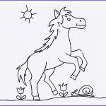 Ausmalbilder Pferde Zum Ausdrucken Kostenlos Das Beste Von Bayern Ausmalbilder Schön Igel Grundschule 0d Archives Schön Pferde Bilder
