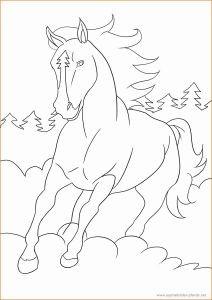 Ausmalbilder Pferde Zum Ausdrucken Kostenlos Einzigartig Ausmalbilder Pferde Gratis Zum Drucken 33 Luxus Galerie Von Fotos