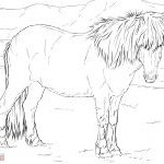 Ausmalbilder Pferde Zum Ausdrucken Kostenlos Frisch 26 Inspirierend Malvorlagen Pferde – Malvorlagen Ideen Bilder