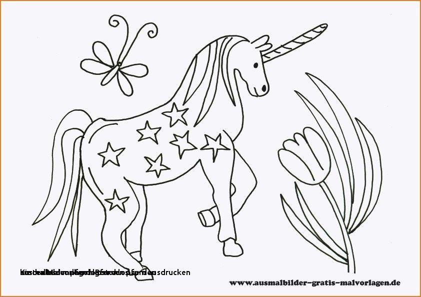 Ausmalbilder Pferde Zum Ausdrucken Kostenlos Frisch Ausmalbilder Pferd Kostenlos Zum Ausdrucken Malvorlage A Book Das Bild