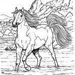 Ausmalbilder Pferde Zum Ausdrucken Kostenlos Inspirierend Bayern Ausmalbilder Frisch Igel Grundschule 0d Archives Schön Das Bild