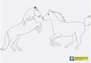 Ausmalbilder Pferde Zum Ausdrucken Kostenlos Inspirierend Pferde Bilder Zum Ausmalen Und Ausdrucken Kostenlos Kostenlos Das Bild