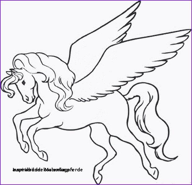 Ausmalbilder Pferde Zum Ausdrucken Kostenlos Neu Ausmalbilder Kostenlos Pferde Malvorlagen Igel Elegant Igel Sammlung