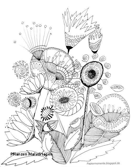 Ausmalbilder Pflanzen Gegen Zombies Frisch Pflanzen Malvorlagen Ausmalbild Frühling Ecoloringfo Das Bild