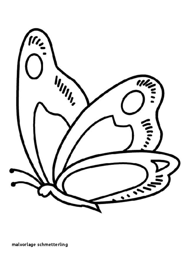 Ausmalbilder Schmetterling Mit Blume Frisch Malvorlage Schmetterling S S Media Cache Ak0 Pinimg originals 0d D0 Bilder