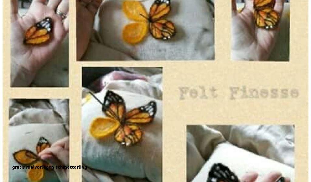 Ausmalbilder Schmetterling Mit Blume Inspirierend Gratis Malvorlagen Schmetterling Stock